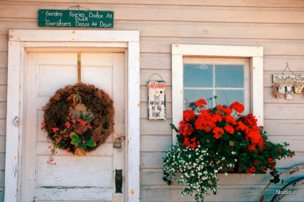 Garden And Still Life Photography Studio J Port Townsend