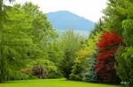 wassell-gardens