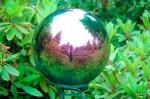 wassell-gardens_4