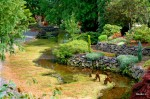 whitney-garden-7